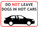 No Dogs In Hot Cars