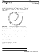 Vinegar Eels Biology Worksheet