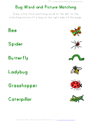 Bug Word And Picture Matching Worksheet