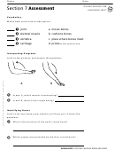 Assessment Sheet - Muscles, Bones And Joints
