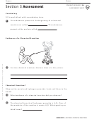Chemical Reactions Assessment Sheet