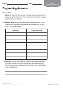Organizing Animals Biology Worksheet