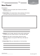 New Plants Biology Worksheet