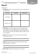 Bag It Biology Worksheet