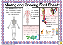 Moving And Growing Fact Sheet Classroom Poster Template