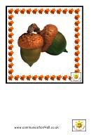 Autumn Style Flash Card Template