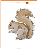 Nuts For The Squirrel - Kids Activity Sheets