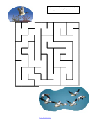 Help The Goose Maze Game Templates