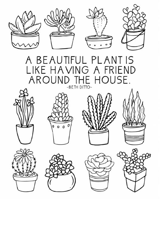 Black And White Beautiful Plants Bookshelf Poster Template Printable pdf