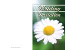 Daisy Wedding Invitation