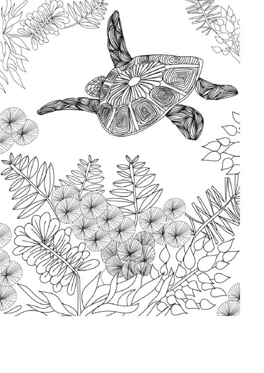 Turtle Hard Coloring Sheet