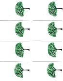 Green Tree Flip Book Template
