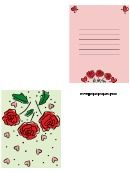 Valentine Roses Card Template