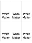 White Matter Biology Flashcards Template