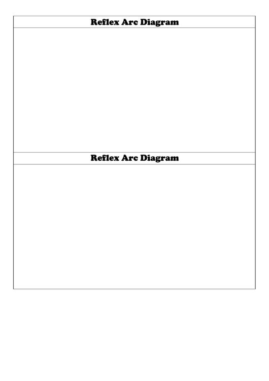 Blank Reflex Arc Diagram Biology Flashcard Template Printable pdf