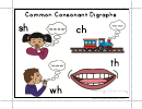 Common Consonant Digraphs Activity Sheet