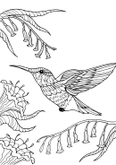 Bird And Flower Coloring Sheet