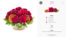 Merlot Flower Pot Template