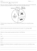 Pie Chart Worksheet
