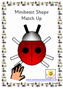 Minibeast Shape Match Up Activity Sheets