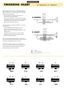 Trumpet/cornet Fingering Chart