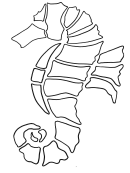 Sea Horse Coloring Sheet Printable pdf