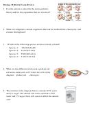 Biology Midterm Exam Worksheet