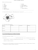 Lewis Dot Diagrams & Bohr Models Chemistry Worksheet - Term 2 Cumulative Review