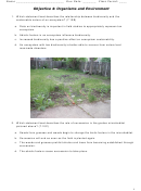 Organisms And Environment Worsksheets