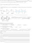 Quiz A Macromolecules And Digestive System Biology Worksheet - Helena High School