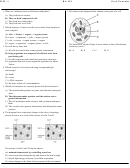 Biology Worksheet 101 With Answer Key - Professor Fournier