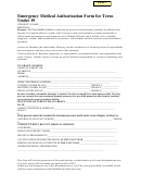 Emergency Medical Authorization Form For Teens Under 19