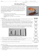Modeling Mitosis Lab