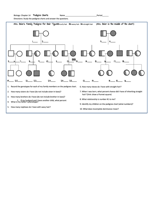 Biology Pedigree Chart Worksheet Chapter 14 Mrs Heiers Family