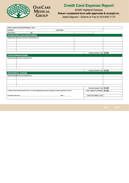 Fillable Sample Credit Card Expense Report Template Printable Pdf Download