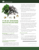 Gypsy Moth Checklist And Record Of Your Self-inspection