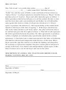 Sample Bill Of Sale