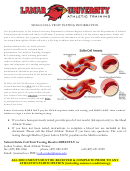 Sickle Cell Trait Testing Information