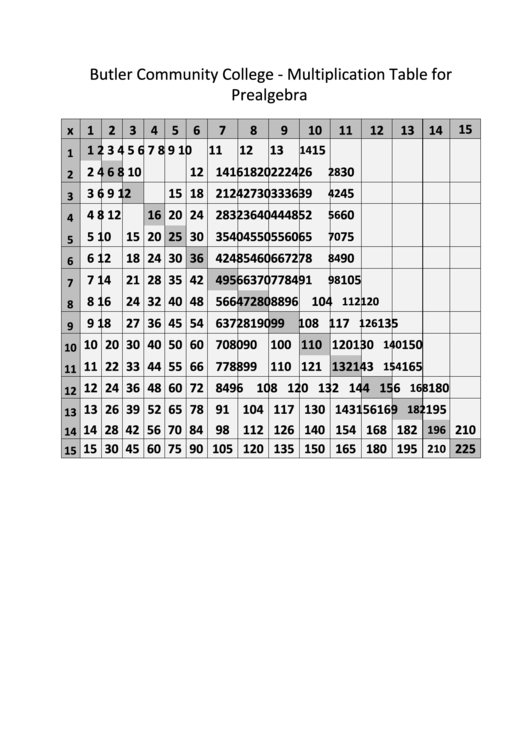15 X 15 Prealgebra Times Table Chart