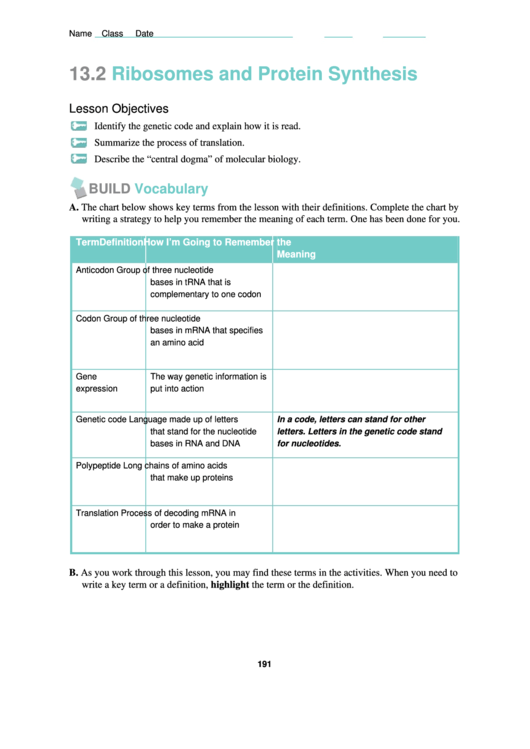 Ribosomes And Protein Synthesis Worksheet Printable Pdf Download