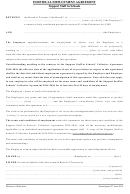 Individual Employment Agreement Template