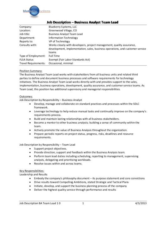 Blueberry Systems Job Description - Business Analyst Team
