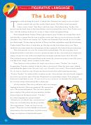 The Lost Dog Reading Comprehension Worksheet