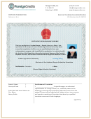 Certificate Of Bachelors Degree Template