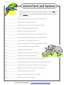 Animal Facts And Opinions Worksheet With Answer Key