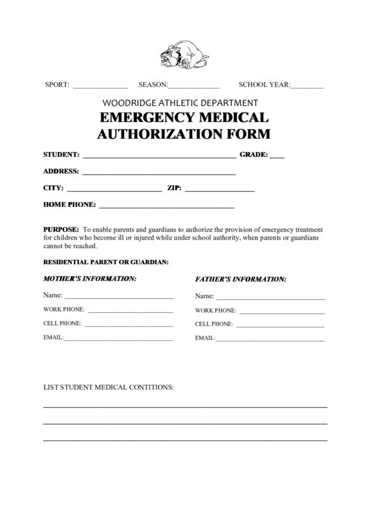 Fillable Emergency Medical Authorization Form Printable pdf