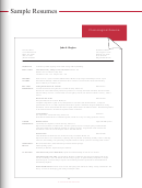 Sample Chronological Resume Template