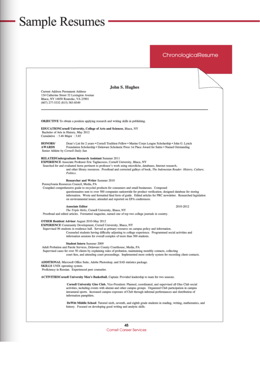 Sample Chronological Resume Template Printable pdf