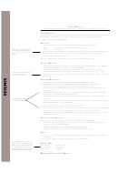 Resume Template Egypt