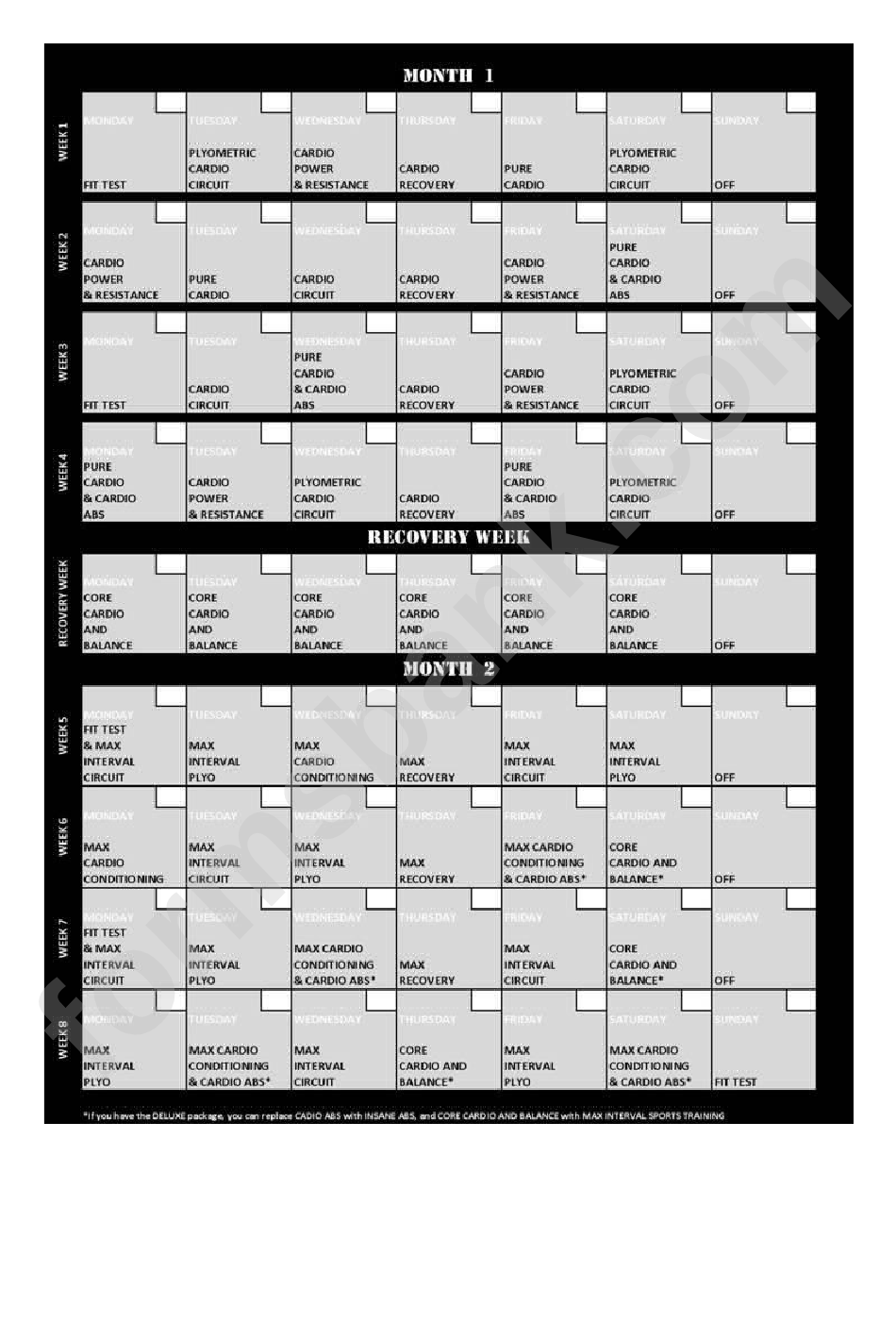 Insanity Workout Schedule printable
